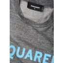 S74GD0324 Dsquared2 T-Shirt In Grey