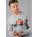 Succiso Sweatshirt in Grey